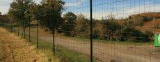 Quelques bonnes raisons d'installer une clôture